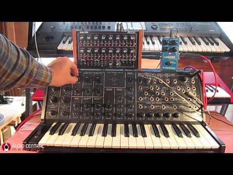 KORG MS20 & Doepfer Dark Time Sequencer