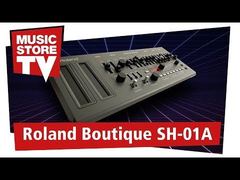 Roland SH-01A Virtuell-Analoger Desktop Synthesizer Test + Demo (deutsch)
