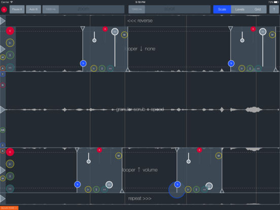 soundfruuze granular looper app