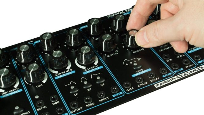 Radikal Synth Paraphonic Module