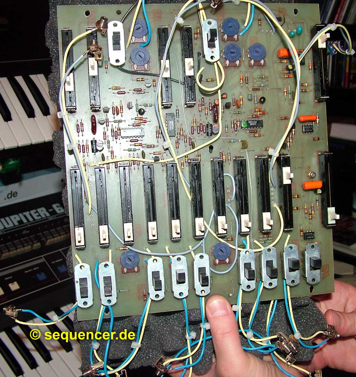 Arp Avatar Board Arp Avatar Board synthesizer