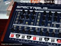 radical spectralis