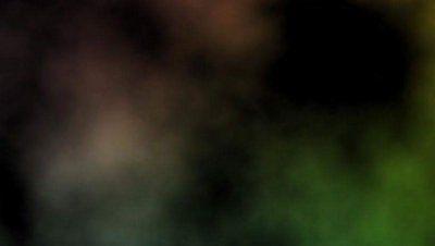 20374-f018061ce22a4ba78a43b63e8a44adff.jpg